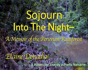 Sojourn thumbnail-2