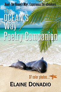 The Ocean's Way Poetry Companion thumbnail